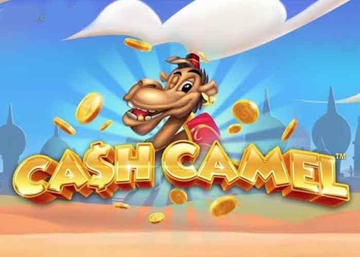 Read more about the article Der Cash Camel Slot, ein glückliches Kamel und Wild Wally